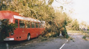 Bus crushed October 1987