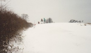 Snowdrifts in Wadhurst