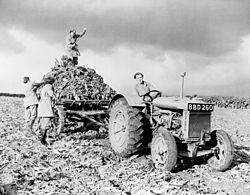 250px-Fordson_tractor_with_members_of_British_Women's_Land_Army_1940s